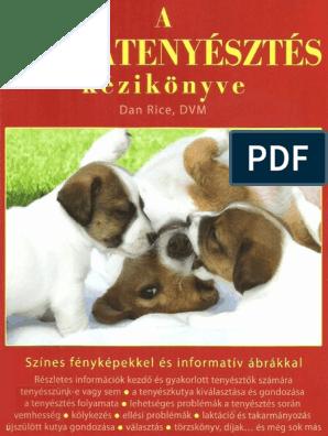 orvosilag anti-labrador