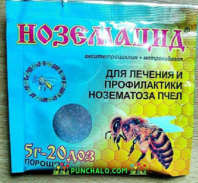paraziták a repülő betegség kezelésében