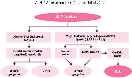 hpv magas kockázatú természetes kezelés)