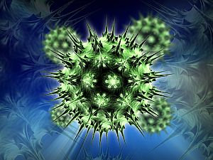 papilloma vírus és agydaganat)