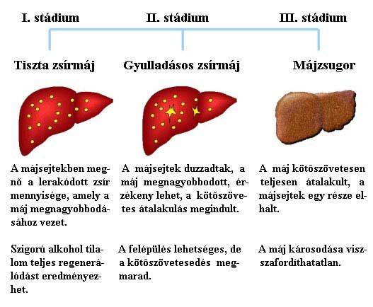 májrák meghatározása)