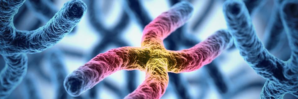 vastagbélrák genetikai kapcsolat