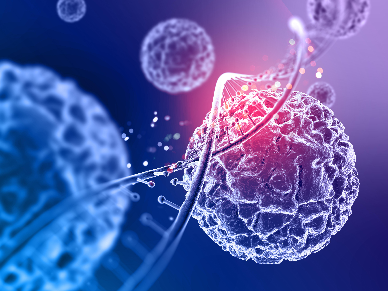 Az elsődleges daganat - jó- és rosszindulatú daganatok