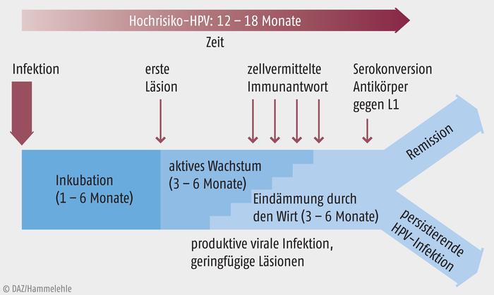 rekombináns vakcina - fordítás - Magyar-Német Szótár - Glosbe