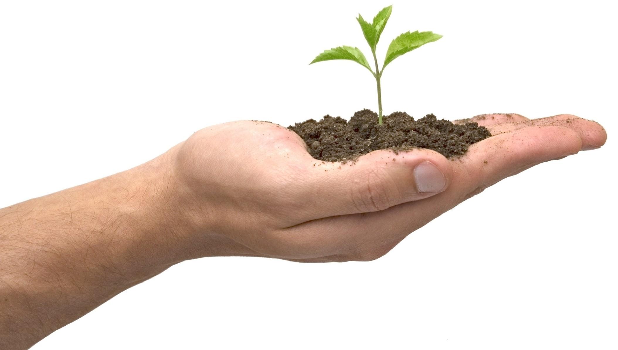 vastagbélrák családtörténete az ültetéshez gyógyszerkezelési felülvizsgálatokra van szükség