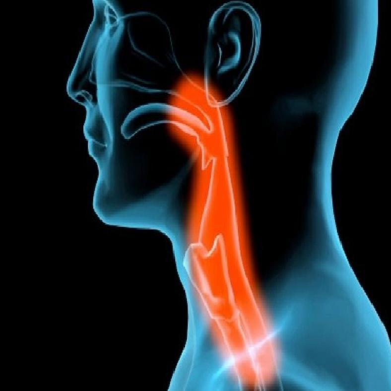 a nyelőcső tüneteinek papilloma és kezelése