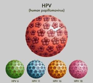 Nem csak a nőket veszélyezteti a HPV