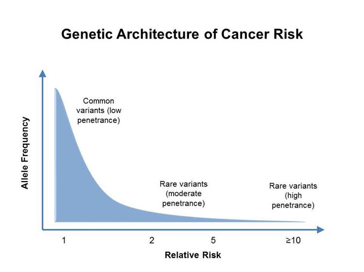 Hasnyálmirigy daganat