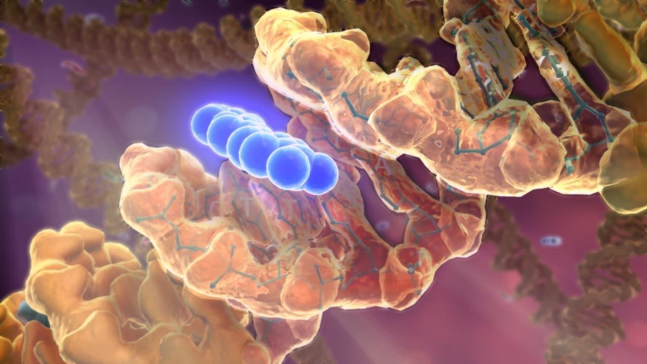 örökletes vastagbélrák a polipózisban