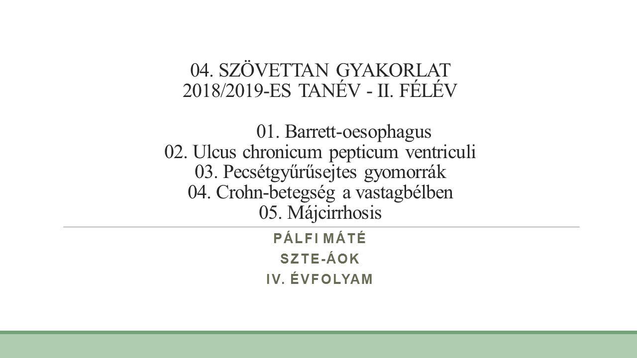 A WHO sürgeti a gyomorrák megelőzését segítő H.pylori szűréseket