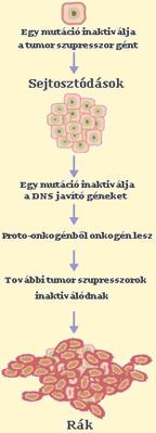 hashártya rák nincs kezelés