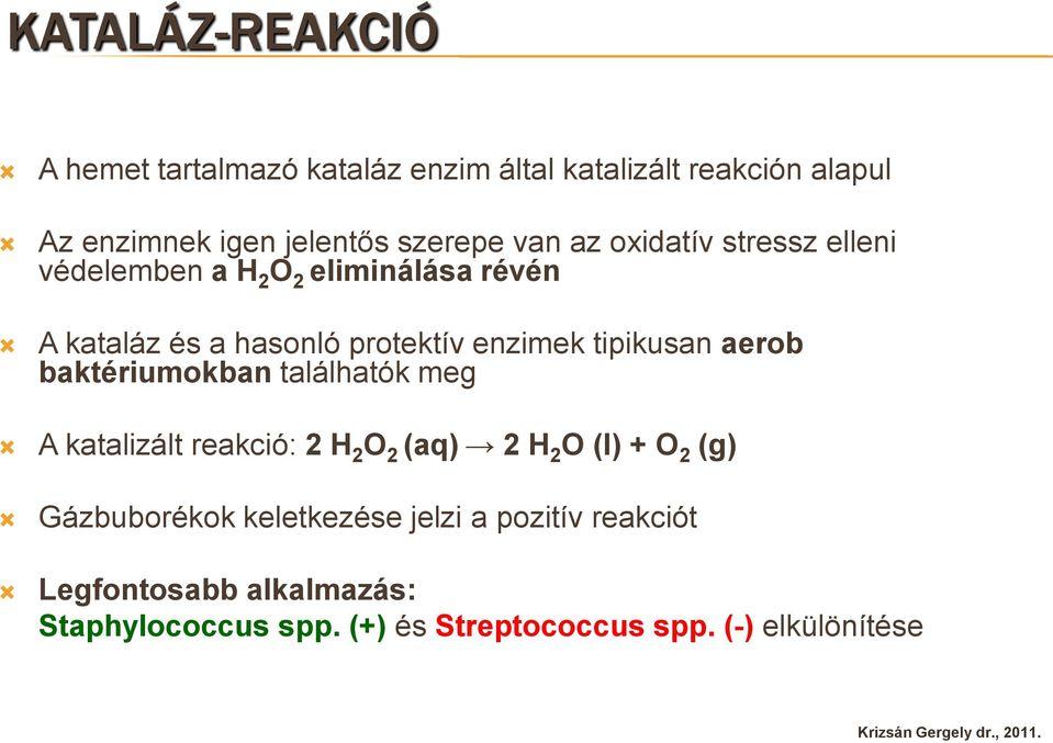 laktóz pozitív baktériumok)
