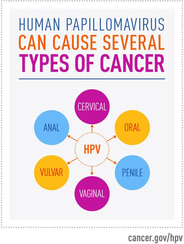 hpv vírus és pap 2