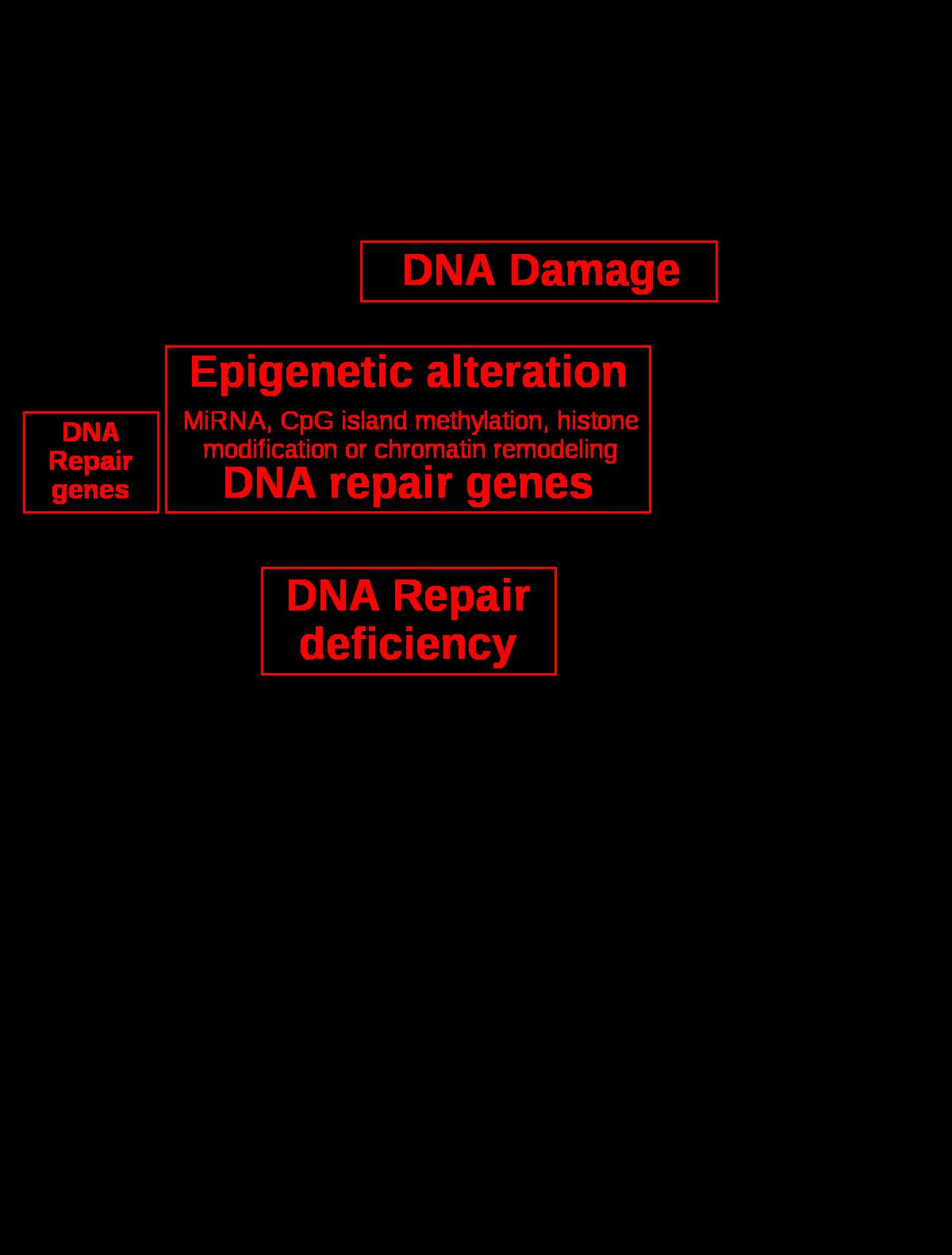 családi rákos irányelvek