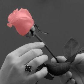 rák teo trandafir