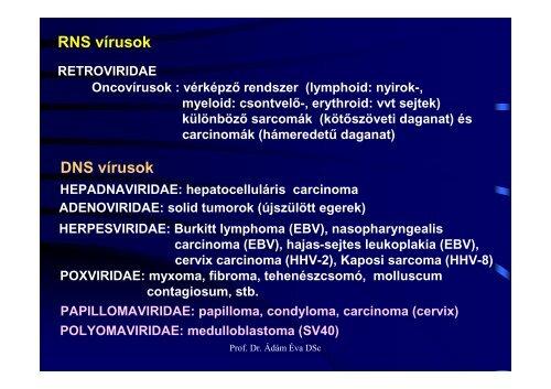 condyloma onkogén