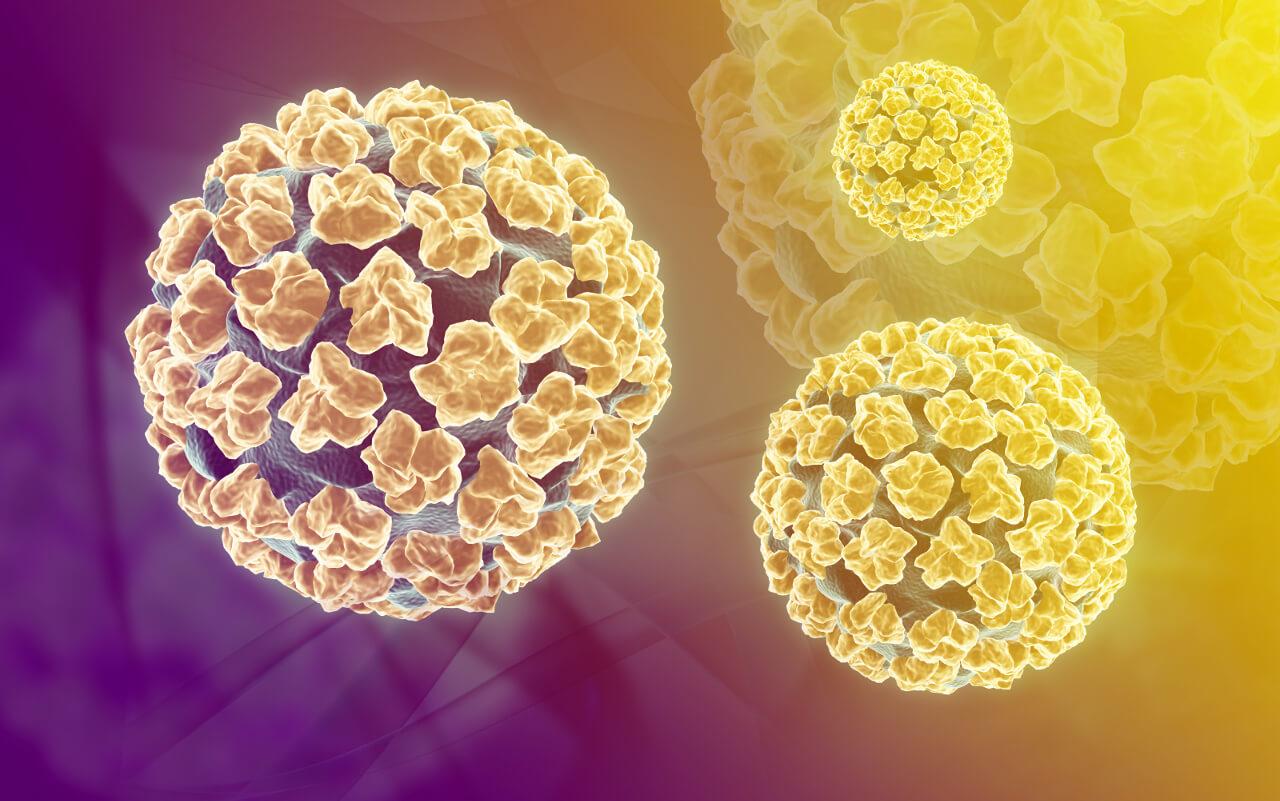papillomavírus lecba)