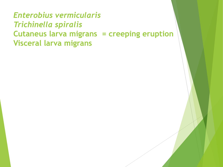 paraziták kezelése cheboksary-ban