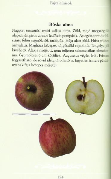 szimmetrikus szemölcsök)