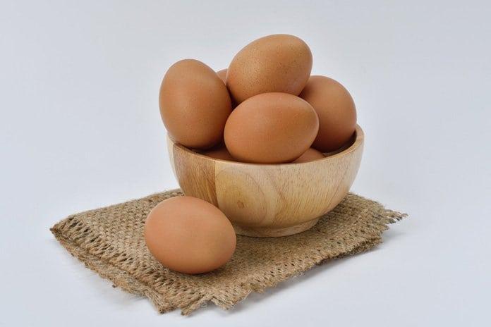 tojásfejlődési tipp)