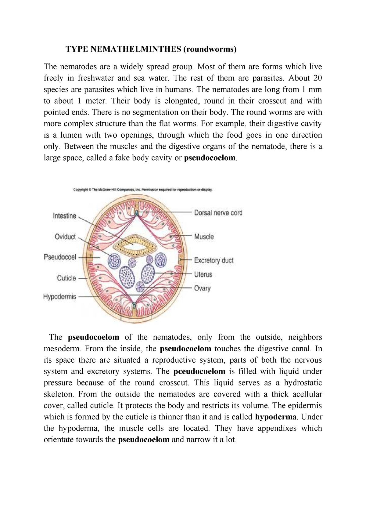 trichocephalus biohelminth a gyomor paraziták tünetei
