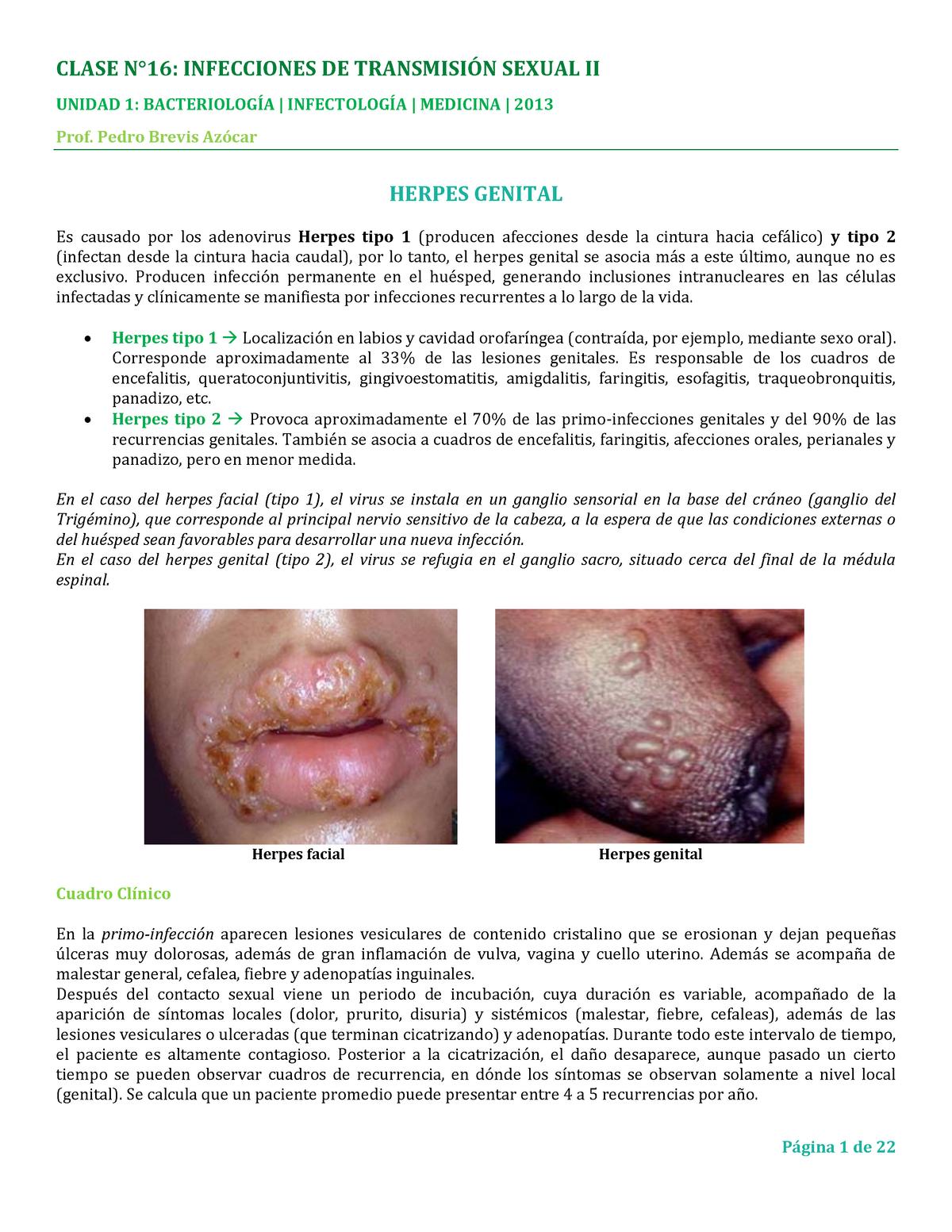 ureaplasma mycoplasma condilom