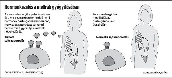 emlőrák hormonkezelés)