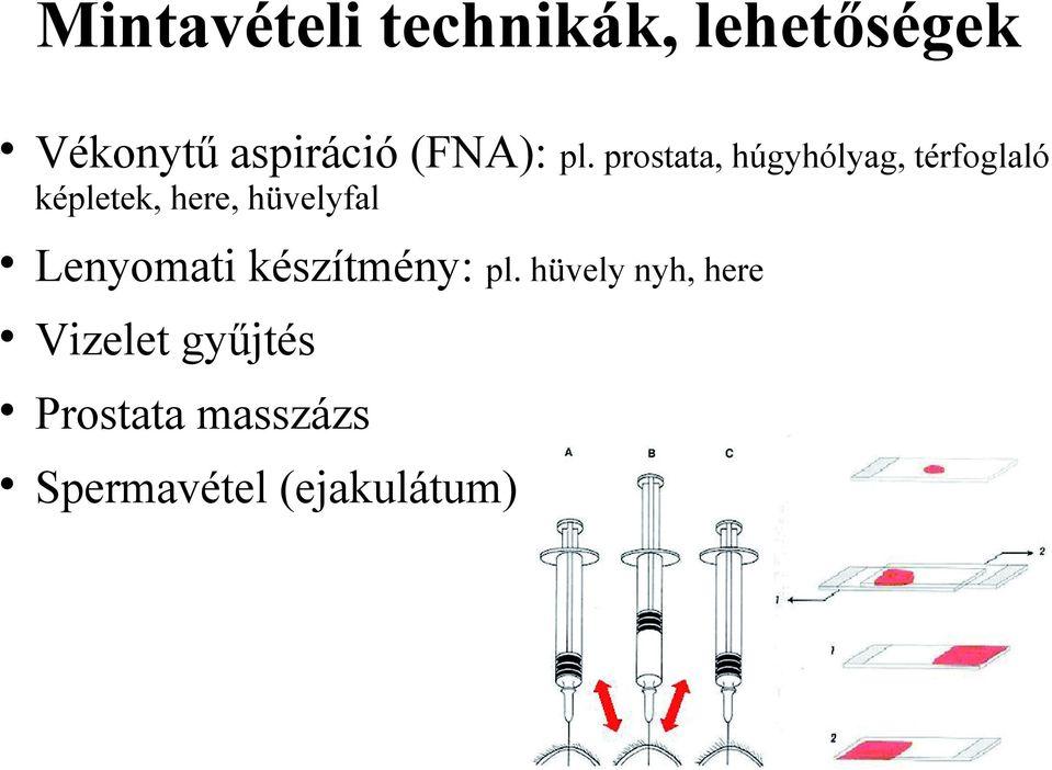 retikulált papillomatosis patológia papillomavírusos bőrkezelő gyógyszerek