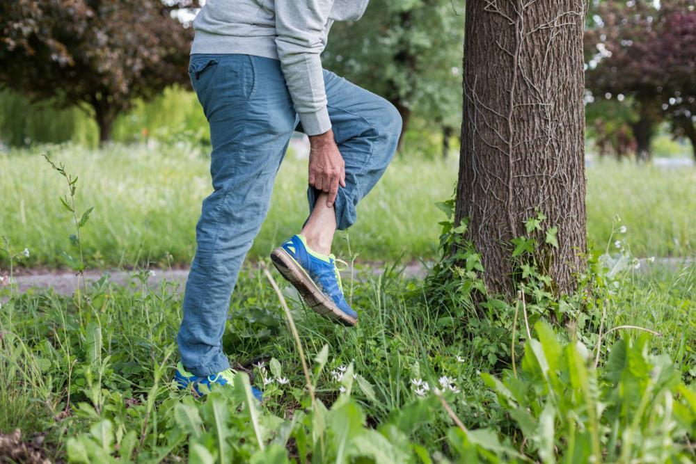 gyöngyös kiütések a bélparazita kezelés megelőzése